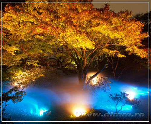 iluminat pentru parcuri, iluminat elei, iluminat color
